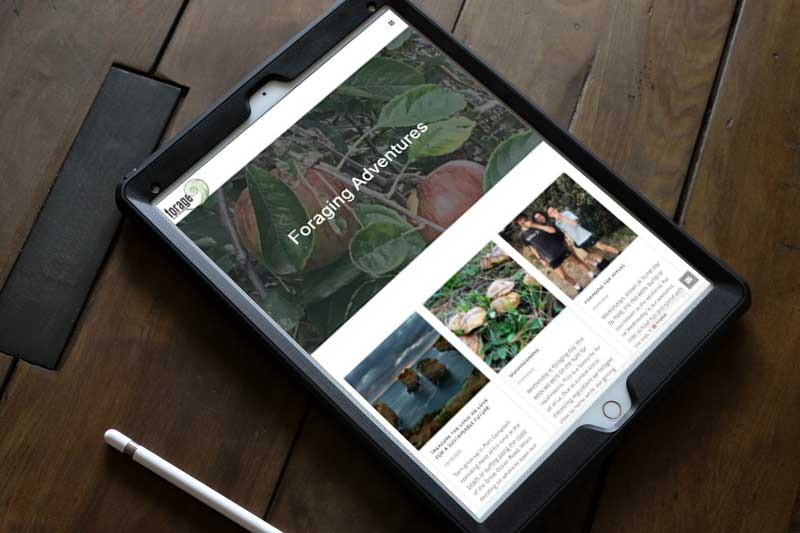 Top Notch I.T Web Design Ballarat Portfolio Image 11